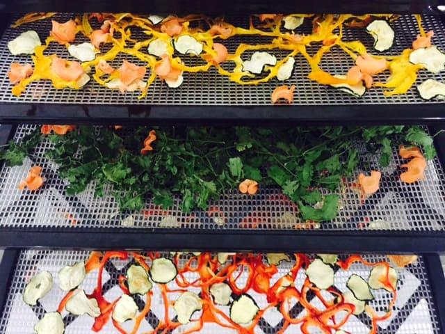 ירקות מיובשים במייבש מזון
