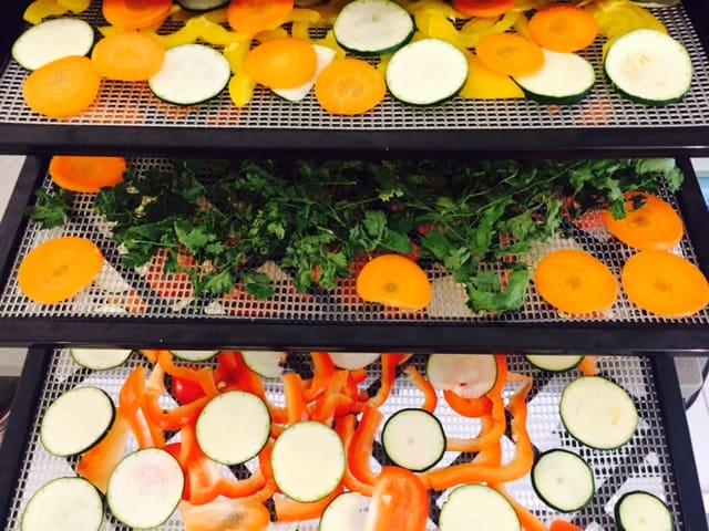 ירקות טריים במייבש מזון